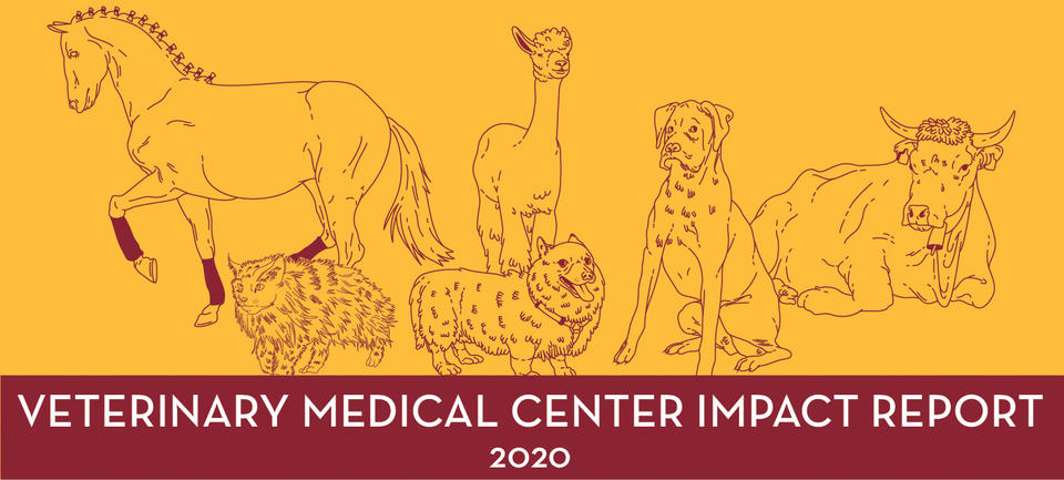 VMC impact banner- maroon line drawings of animals with a gold background