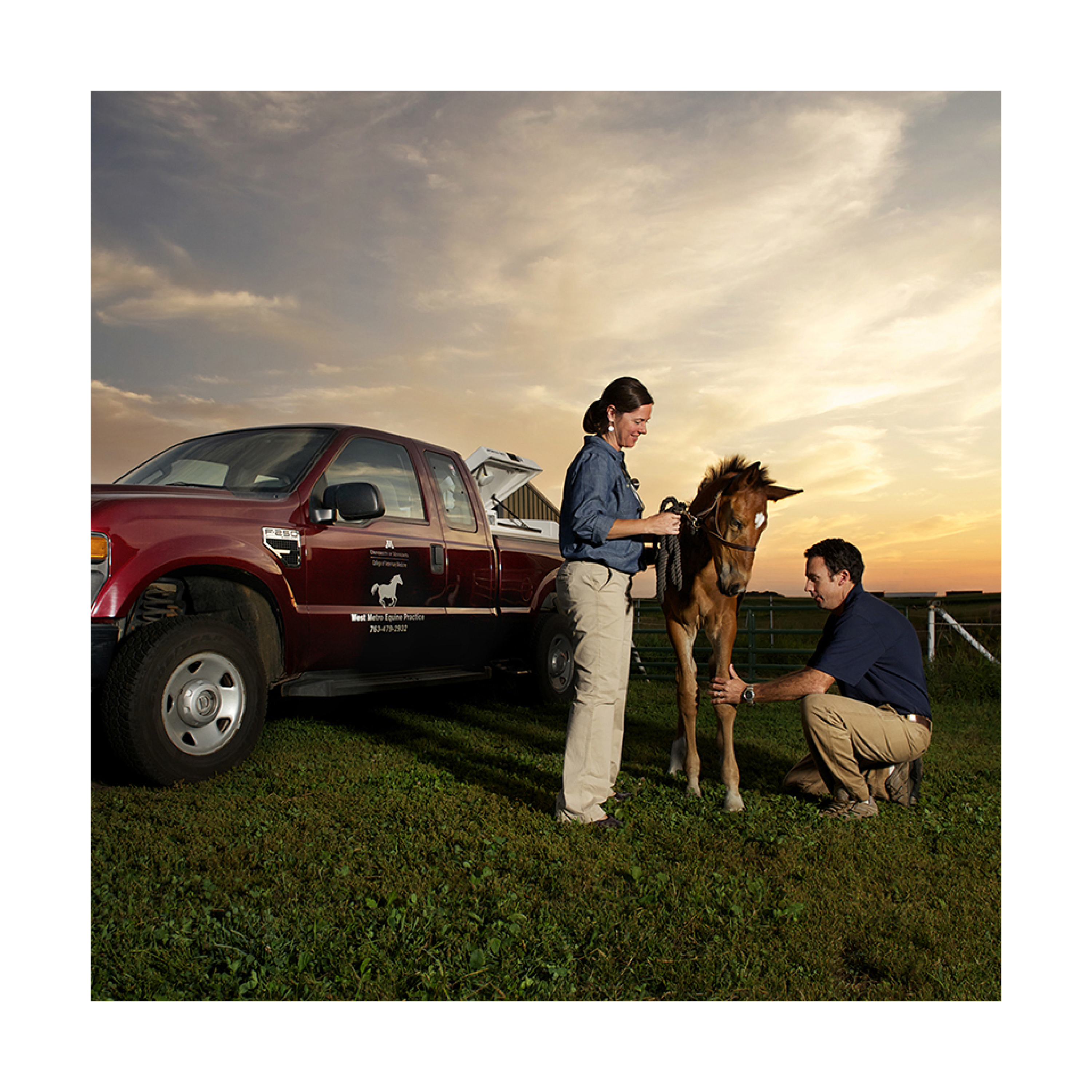 West Metro Equine Practice providers examining a horse in the field next to their truck